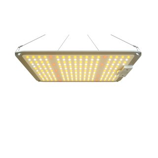 LED Grow Panel Lights 110W